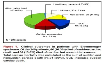 Clinical outcomes in patient with Eisenmenger syndrome.